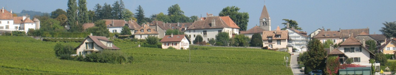 Commune de Bursins